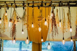 Festoon Hire Cambridge
